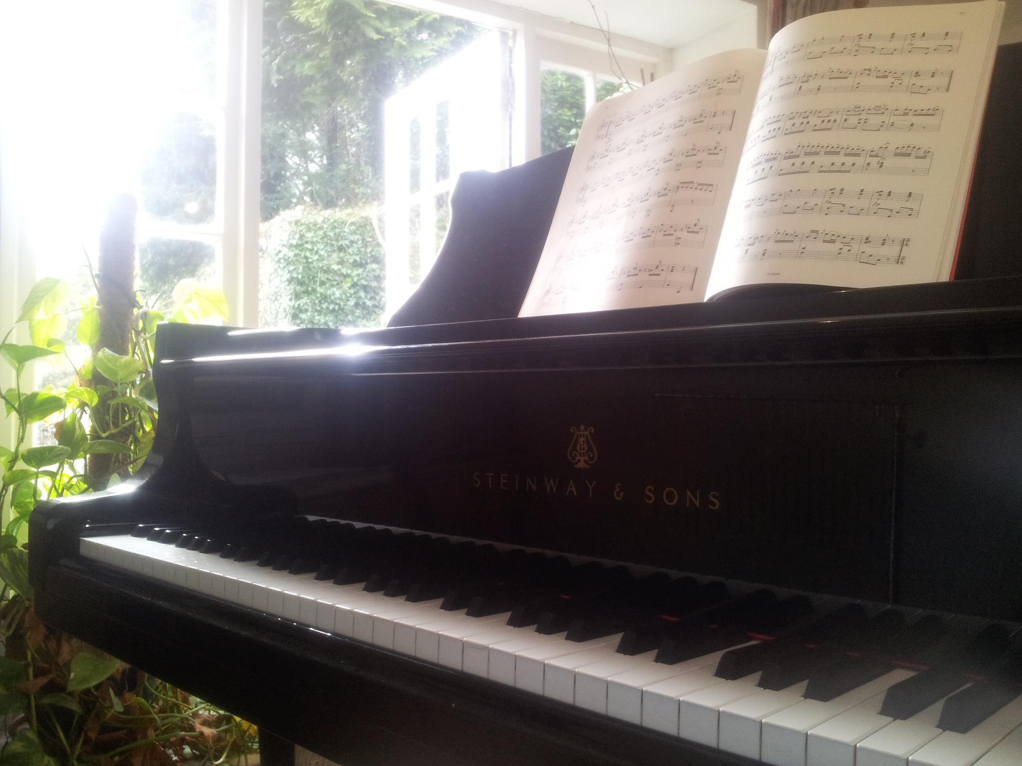 Jackdaws Piano